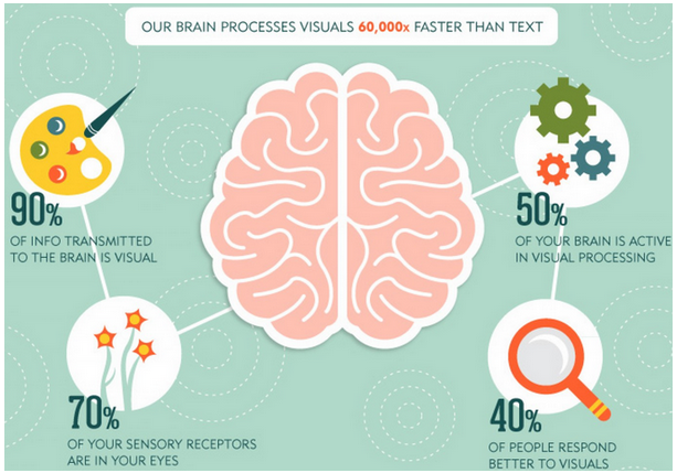 Brain_Processing_Visuals